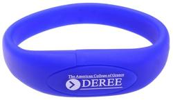 Oval Silicone Wristband Flash Drive