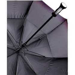 "Blizzard 30"" Auto Golf Umbrella"